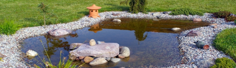 Tips Of Decorating Your Home Garden And Pool