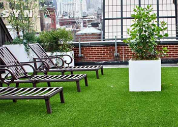 Artificial Grass for your Lawn